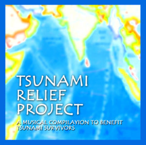 Tsunami Relief Project